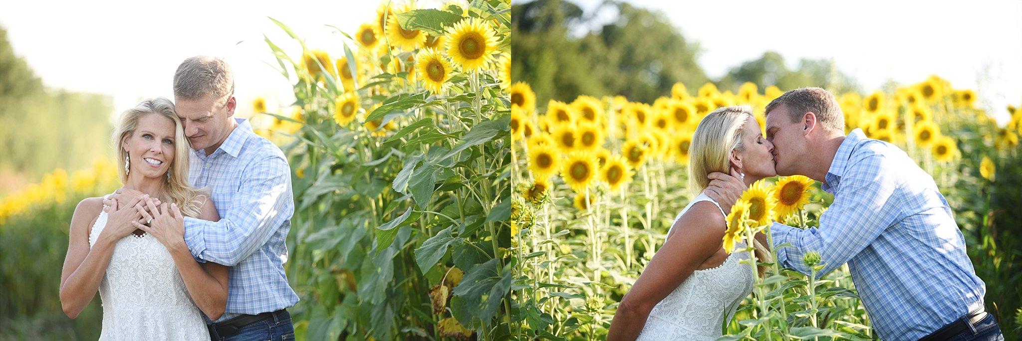 Sunflower-field-Photography-jenfolio_0135.jpg